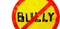 Bully_logo